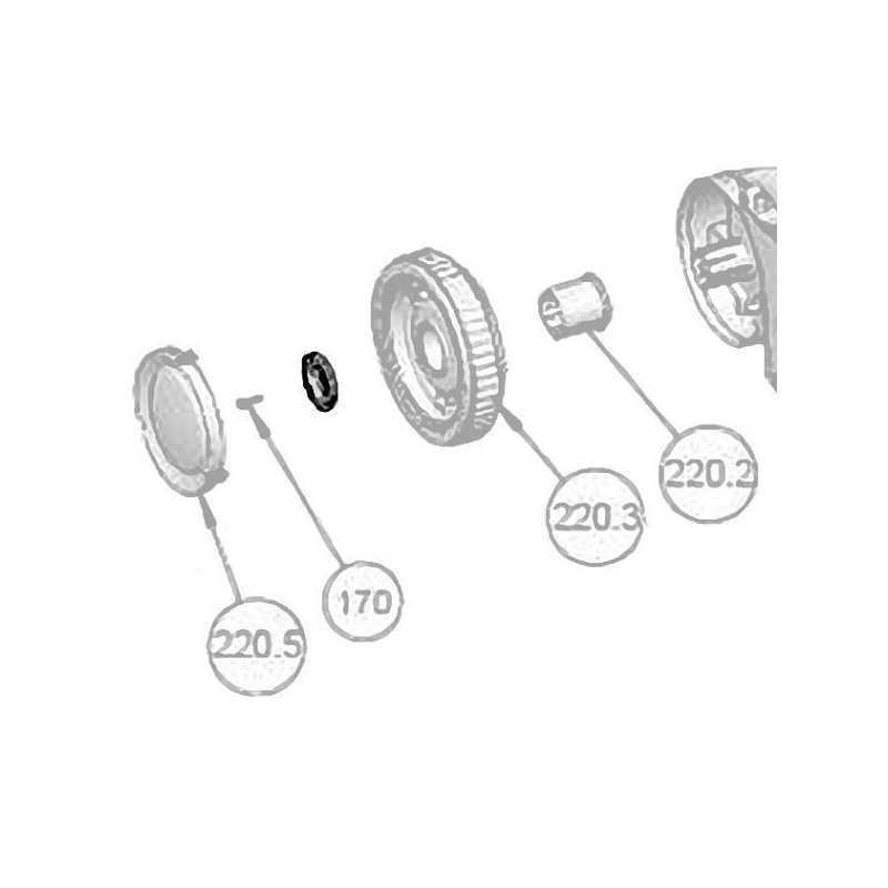 Rondelle roue arrière nettoyeur automatique Max 3 Astralpool