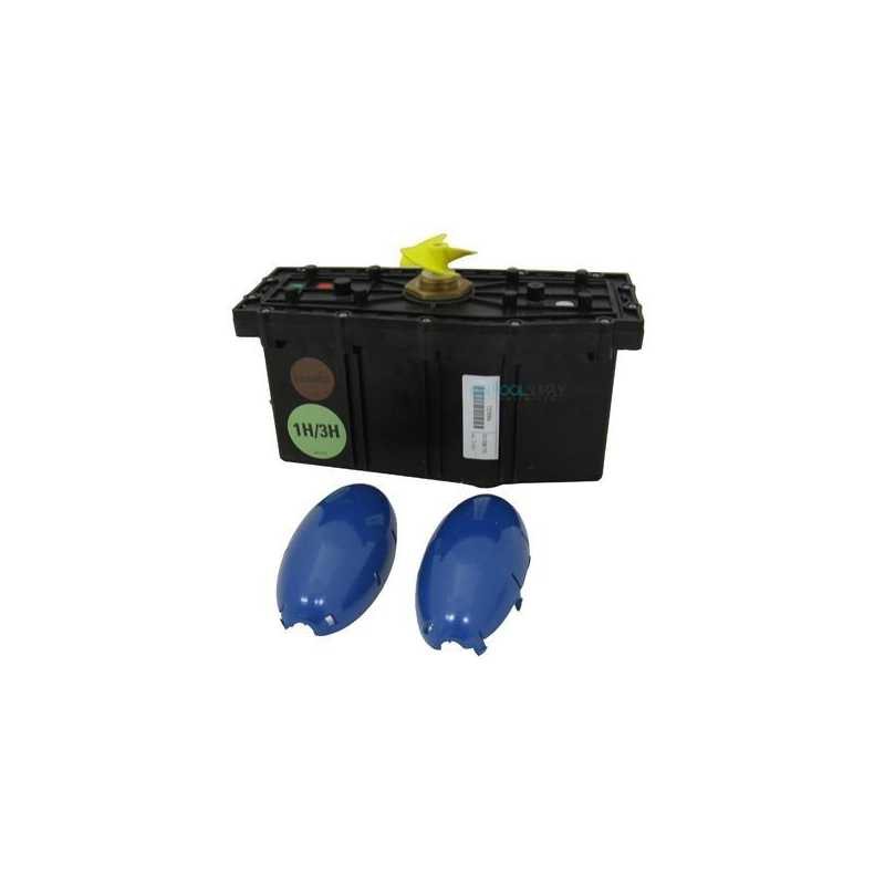 Bloque motor limpiafondos Dolphin (G 1año)
